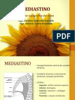 03_Mediastino_-_Corazon_-_Grandes_Vasos.pdf
