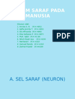Sistem Saraf Presentasi