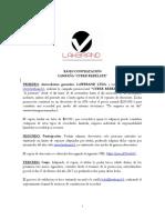 Bases Campaña Cyber Rebélate- Lawbrand_final