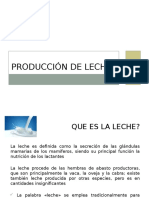 1 Producción de Leche