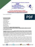 Criterio técnico Seccional ANEP-MEIC contra el proyecto de Ley FOMPRODUCE