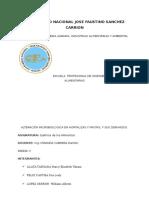 La Alteracin Microbiana en Verduras1 160527164215
