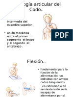 Fisiología Articular Del Codo
