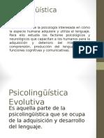 Power Point. Psicolinguistica Evolutiva