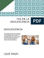 autismo adolescencia