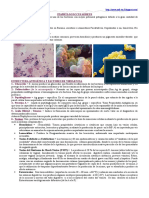 46120978-Staphylococcus-Aureus-Campylobacter-y-Helicobacter-Pylori.doc
