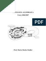 TopoAlg0607.pdf