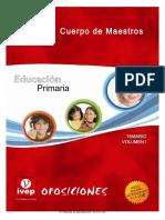 219354265-Educacion-Primaria-Tema-13.pdf