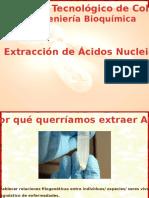 extracciondean-120909180439-phpapp01
