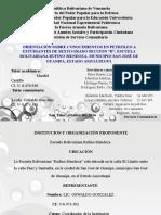 Servicio Comuñitario Yulitza Soar Galañtoñ Machado