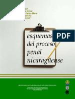 esquema del proceso penal en nicaragua.pdf