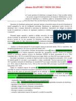 Raport tr.IIIAdrian cu observatii.docx