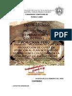 PROYECTO Pueblo Libre Corregido