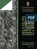 Delgado_Fuente.pdf