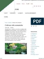 Coltivare Erbe Aromatiche_ Guida Completa