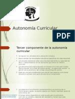 Autonomía Curricular