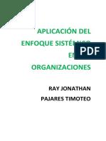 Aplicacion de Enfoque Sistematico en Las Organizaciones