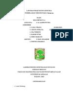 Bundelan Fix Miosis Gabungan