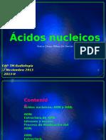 1-ACIDOS NUCLEICOS.pptx