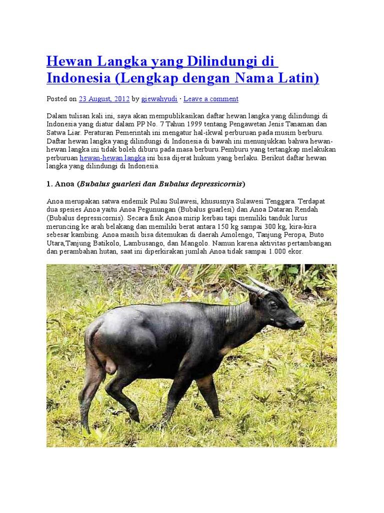 9200 Koleksi Nama Dan Gambar Hewan Yang Dilindungi Di Indonesia Gratis