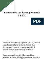 PSN mentah