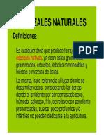 pastizales_naturales.pdf