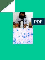 Standard Manual for Laboratory Technicians on Sputum Smear Microscopy