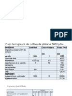 Costo de Produccion Platano