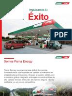 PUMA Spanish Corporate