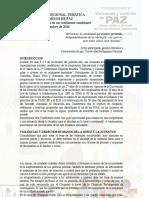 Declaracion Final Conferencia Tematica