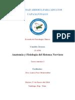 Anatomía y Fisiología Del Sistema Nervioso Tarea 2