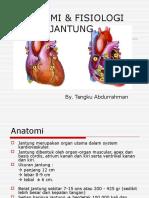 anfis jantung