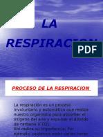 La importacia de la Respiracion