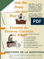Expo Auditoria Cuentas Por Pagar