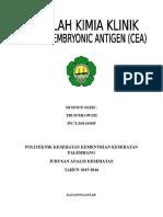 cover CEA
