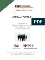 Itrainingexpert Corporate Profile2011