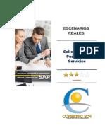 Basic User SAP ERP - SolPed de Servicios Anual