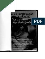Las Luciernagas y La Noche