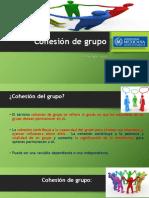 Cohesión de Grupo