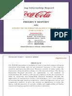 Coca-Cola Summer Internship Report.pdf