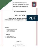 P6-Microbiología