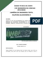 Informe de Imbatex