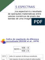 Indices Espectrais