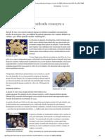 25. Moeda da Europa unificada começou a circular em 2002 _ Internacional _ DW.DE _ 19.07.pdf