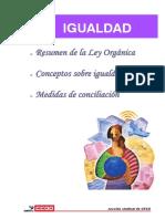 2007 Ley Igualdad