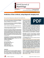 Prediction of Liver Cirrhosis, Using Diagnostic Imaging Tools