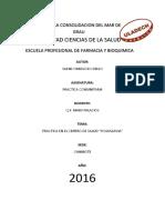 INFORME_PRACTICAS COMUNITARIAS.pdf