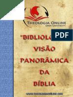 BIBLIOLOGIA_VISAO.pdf
