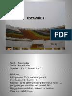 ROTAVIRUS - Dr. Sri Udaneni - 29 April 2013