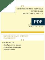 MIKROBIOLOGI - Dra. Lusia S. Narti - 09 April 2013.pptx